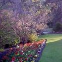 Botanical Gardens, Christchurch