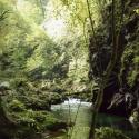 Calm & quiet serenity of Vintgar Gorge