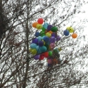Balloons in the park