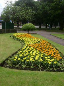 Flowerbed in Kirkcaldy