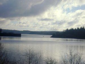 Kielder Water Park