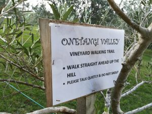 Onetangi Valley Vineyard Walking Trail