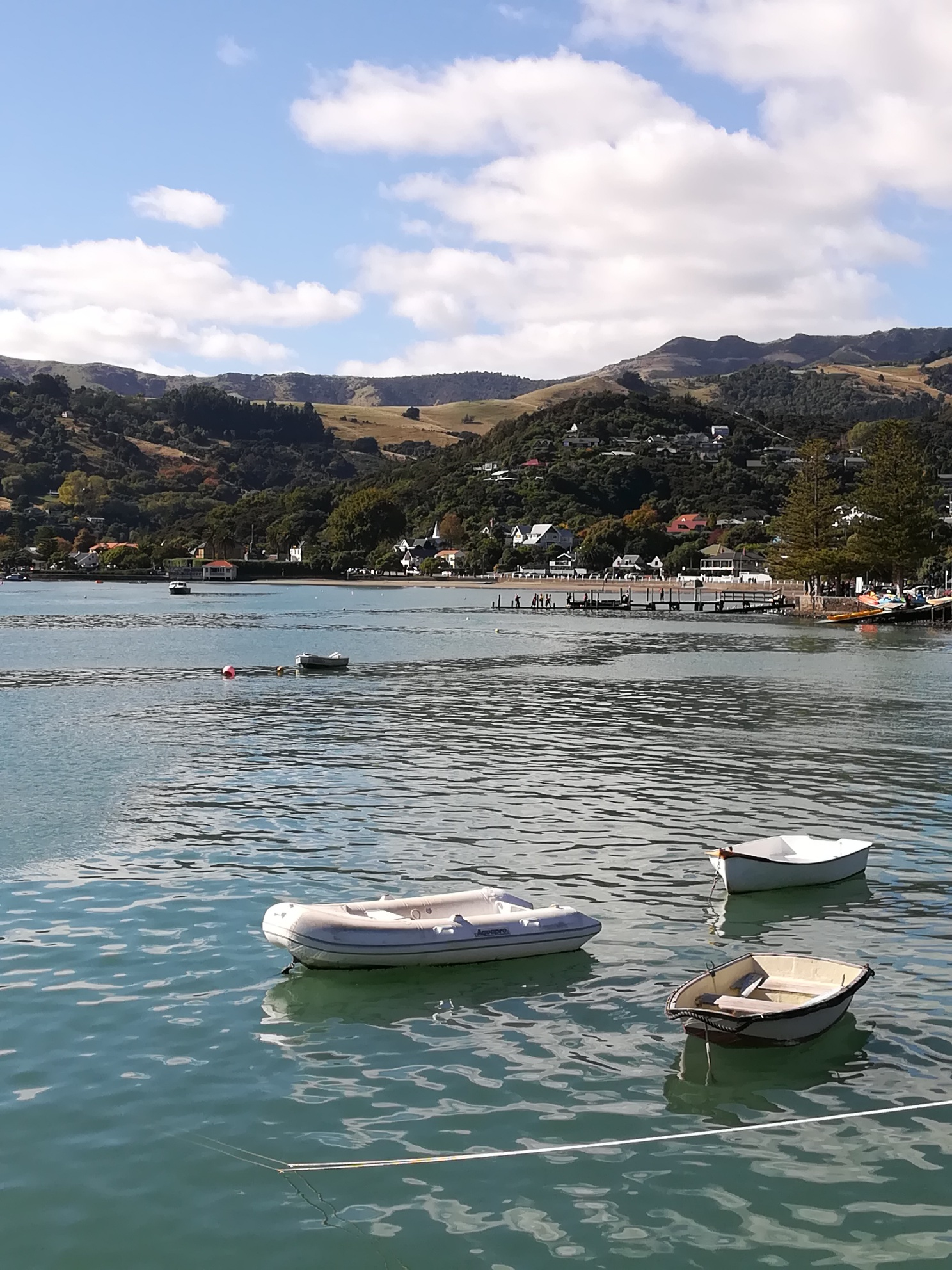 Akaroa Harbour In The Sunshine